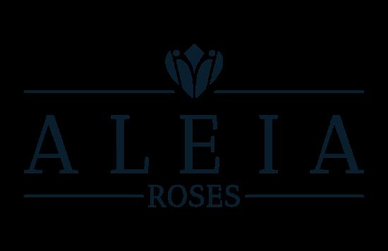 aleia_roses-550