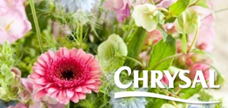 Try our partner Chrysal's professional flower care products for free