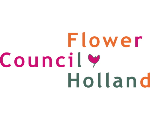 flower council holland bbh