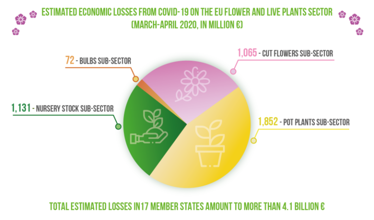 Survey confirms: brutal impact of COVID-19 on the horticulture sector, with billions lost in March/April