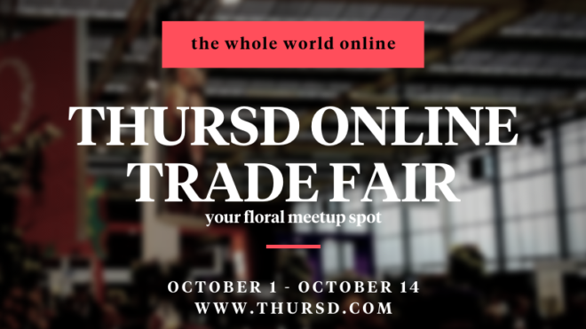 Thursd to organise Online Trade Fair in the first two weeks of October