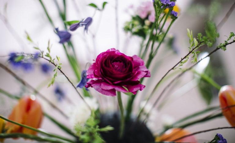 Understanding the opportunities of Oasis® BLACK Floral Foam