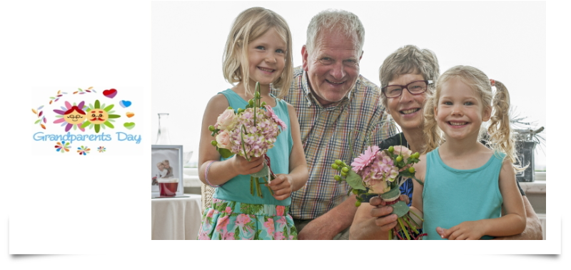 Grandparents Day: added value for the world of floristry