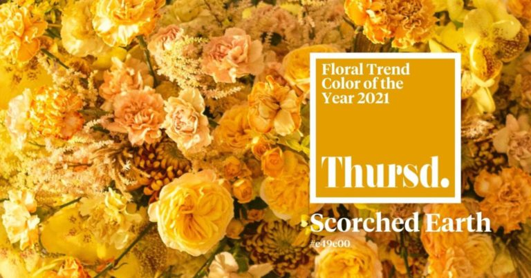 'Scorched Earth': Thursd boldly draws attention to (un-)sustainability with new 2021 Floral Trend Color