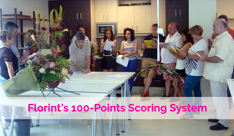 Florint's International 100-Points System